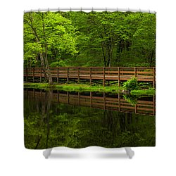 The Bridge Shower Curtain by Karol Livote