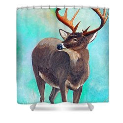 the Buck Stops Here Shower Curtain by Sherril Porter