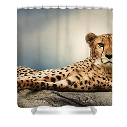 Shower Curtain featuring the photograph The Cheetah by Christine Sponchia