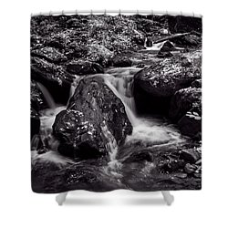 The Creek In Black And White Shower Curtain