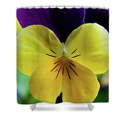 Shower Curtain featuring the photograph The Face Of A Pansy by Brenda Jacobs