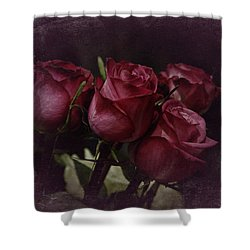 The Four Roses Shower Curtain by Richard Cummings