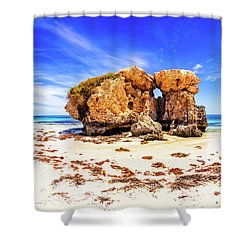 The Sentry, Two Rocks Shower Curtain
