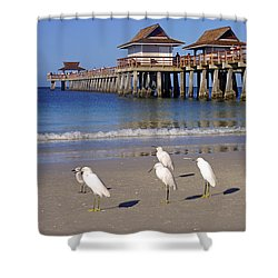 The Historic Naples Pier Shower Curtain