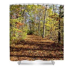 The Outlet Trail Shower Curtain by William Norton