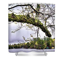 The Pond In Old Forge Shower Curtain by David Patterson