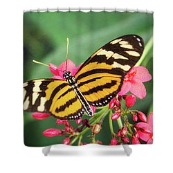 Shower Curtain featuring the photograph The Postman Longwing  by Saija Lehtonen