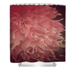 The Promise Of Love Shower Curtain