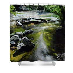 The River At Lady Bagots Shower Curtain