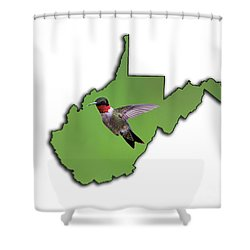 The Ruby-throated Hummingbird Shower Curtain