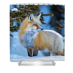 The Snow Beauty Shower Curtain