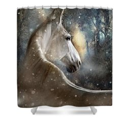 The Spirit Of Winter Shower Curtain by Dorota Kudyba