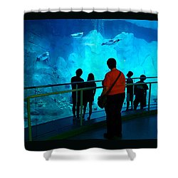 The View Down Under - 2 Shower Curtain