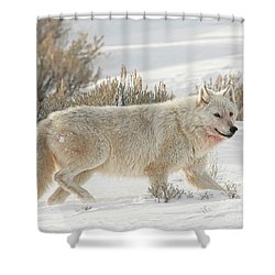 The White Lady Shower Curtain