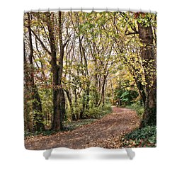 The Woods In Autumn Shower Curtain by Mikki Cucuzzo