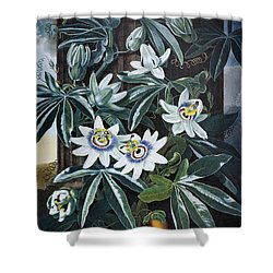Thornton: Passion-flower Shower Curtain by Granger