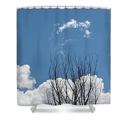 Topping It Off - Shower Curtain