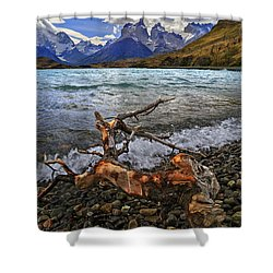 Torres Del Paine 17 Shower Curtain by Bernardo Galmarini