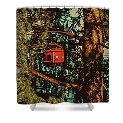 Train Bird House Shower Curtain