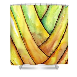 Travelers Palm Trunk Shower Curtain