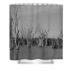 Tree Cemetery Shower Curtain by Douglas Barnard