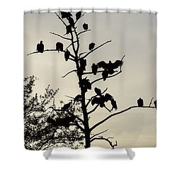 Tree For The Hungry Shower Curtain