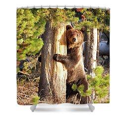 Tree Hugger Shower Curtain