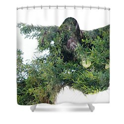 Tree Cat Shower Curtain