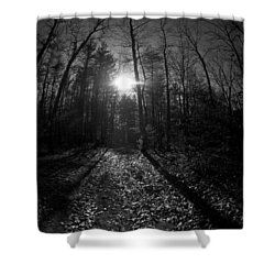 Tree Shower Curtain by Simone Ochrym
