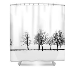 Shower Curtain featuring the photograph Trees by Chevy Fleet