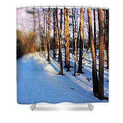 Trees Photography Shower Curtain by Mark Ashkenazi