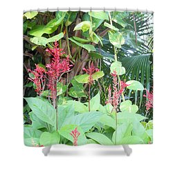 Shower Curtain featuring the photograph Tropical Flowers by Kay Gilley