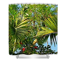 Tropical Plants Shower Curtain by Zalman Latzkovich