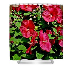 Tropical Red Hibiscus Bush Shower Curtain by Marsha Heiken