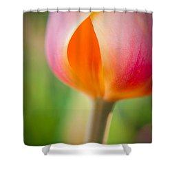 Shower Curtain featuring the photograph Tulip-2 by Joye Ardyn Durham