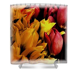 Tulips  Shower Curtain by David Patterson