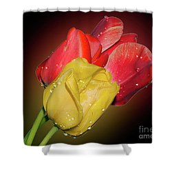Tulips Shower Curtain by Elvira Ladocki