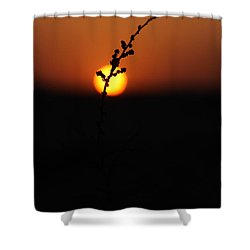 Shower Curtain featuring the photograph Tumpak by Jez C Self