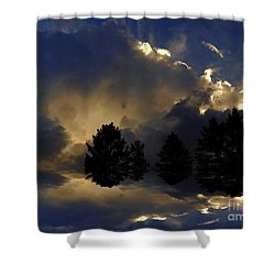 Tumultuous Shower Curtain by Elfriede Fulda