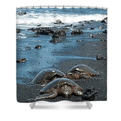 Turtles On Black Sand Beach Shower Curtain