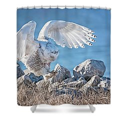 Two Point Landing Shower Curtain