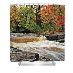 Unnamed Falls Shower Curtain by Michael Peychich