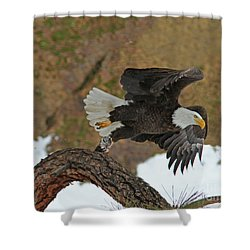 Up Up And Away Shower Curtain