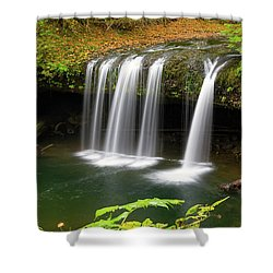 Upper Butte Creek Falls In Autumn Shower Curtain by David Gn