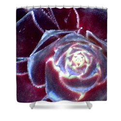 Velvet Rosette Shower Curtain