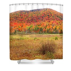 Vermont Foliage 1 Shower Curtain