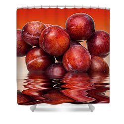 Victoria Plums Shower Curtain