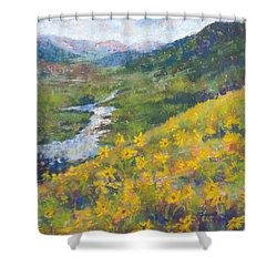 View From Baxters Gulch Shower Curtain