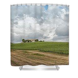 Vineyard In Sardinia Shower Curtain