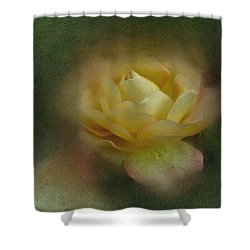 Vintage October Rose  Shower Curtain by Richard Cummings